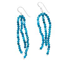 Jay King Sterling Silver Blue Apatite Bead Tassel Drop Earrings