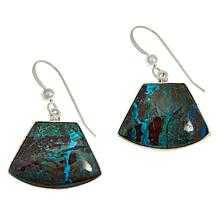 Jay King Sterling Silver Green Arizona Botanical Stone Drop Earrings