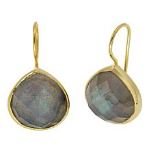 Joya Labradorite Goldtone Drop Earrings