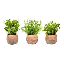 Pure Garden Set of 3 Greenery Arrangements