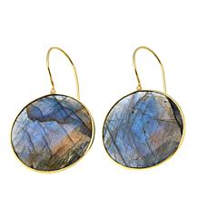 Rarities Labradorite Disc-Shaped Drop Earrings