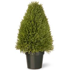 2-1/2' Artificial Topiary Juniper Tree