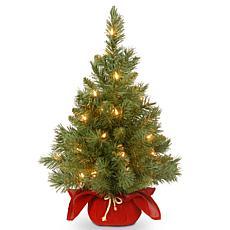 2' Majestic Fir Tree w/Lights - Red