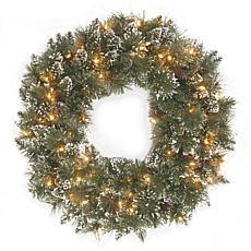 "24"" Glittery Bristle Pine Wreath w/Lights"