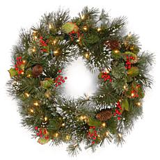 "24"" Wintry Pine Wreath w/Lights"