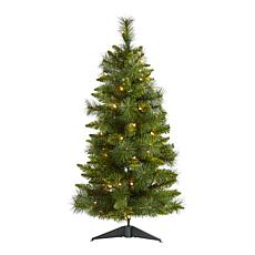 3 ft. New Haven Pine Artificial Christmas Tree with 50 Warm White L...