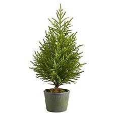 3 ft. Norfolk Island Pine Natural Look Artificial Tree in Decorativ...