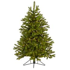 4' Cambridge Spruce Flat Back Artificial Christmas Tree with 100 Wa...