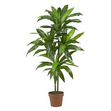 4 Ft. Dracaena Real Touch