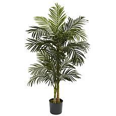 5 Ft. Golden Cane Palm Silk Tree