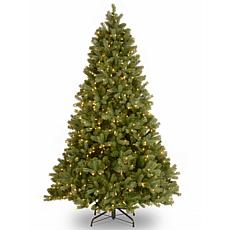 6.5 ft. FEEL-REAL® Downswept Douglas Fir Tree with Clear Lights