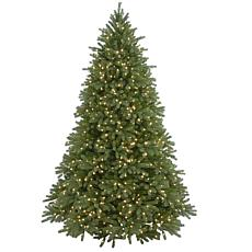 7-1/2'Jersey Fraser Tree (1250 Lights)