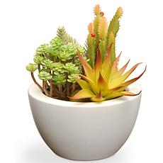 "7.5"" Artificial Succulent Plants"