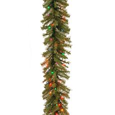 9'Norwood Fir Garland w/Multicolor