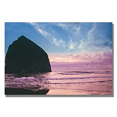 Ariane Moshayedi 'Canon Beach II' Canvas Art