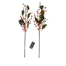 """As Is"" august & leo Set of 2 LED Twigs with Remote"