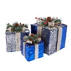"""As Is"" Winter Lane Sequin Christmas Boxes - Set of 3"
