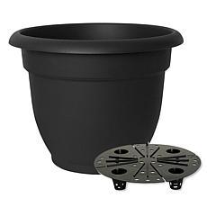 "Bloem Ariana 12"" Self-Watering Planter"