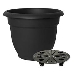"Bloem Ariana 16"" Self-Watering Planter"