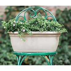Bloem Lucca 2-1/2-Gallon Self-Watering Window-Bow Planter - 15""