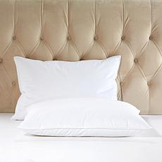 Concierge Collection Hotel Soft Feather 2-pack Bed Pillows - Jumbo