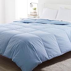 Concierge Collection Platinum 100% Cotton Down Comforter