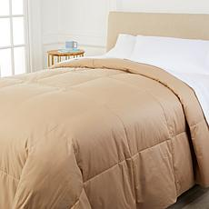 Concierge Collection Platinum 400TC Cotton Goose Down Comforter - Full