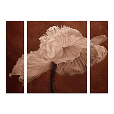 "Cora Niele ""White Poppy"" Multi-Panel Art - 24"" x 32"""