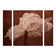 """Cora Niele """"White Poppy"""" Multi-Panel Art Set - 24"""" x 32"""