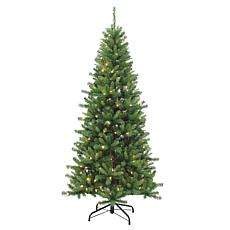 Gerson 7' LED Lighted Ozark Pine Tree