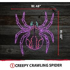 Halloween Giant Outdoor LED Lights  Creepy Crawling Spider (48 x 40...