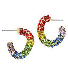 """Heidi Daus """"Send Me a Link"""" Multi-Color Crystal Hoop Earrings"""