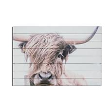 Highland Cow 24x36 Print on Wood