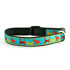 Isabella Cane Dog Party Dog Collar - Medium