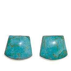 Jay King Chilean Turquoise Sterling Silver Earrings