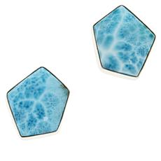 Jay King Sterling Silver Larimar Freeform Stud Earrings