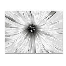 """Kathie McCurdy """"White Garden"""" Canvas Art"""