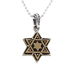 King Baby Jewelry Star of David Pendant w/Chain