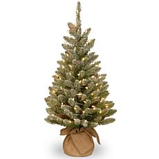National Tree 3' Snowy Concolor Fir Tree, Burlap w Warm White LEDs