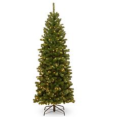 National Tree 6' North Valley® Spruce Pencil Slim Tree w/ Clear Lights