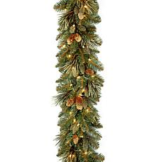 National Tree Carolina Pine Garland w Flocked Cones, 100 Lights, 9x10