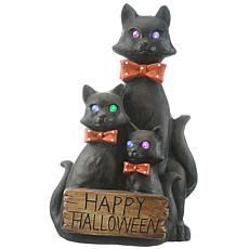 """National Tree Company 21"""" Black Cat Trio with LED Light and Sound"""