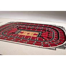 NBA  5-Layer StadiumViews 3D Wall Art - Chicago Bulls