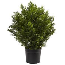Nearly Natural 2 ft. Cedar Bush Indoor/Outdoor Plant