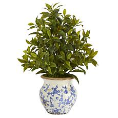"""Nearly Natural 28"""" Coffee Leaf Artificial Plant in Planter Real Touch"""