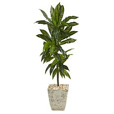 Nearly Natural 4' Dracaena Artificial Plant White Planter (Real Touch)