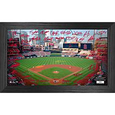 Officially Licensed MLB 2021 Signature Field Photo Frame - St. Louis