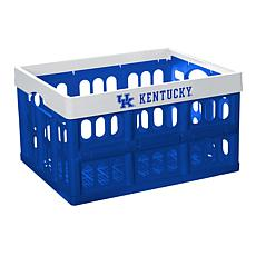 Officially Licensed NCAA Collapsible Crate - Kentucky