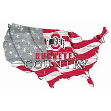 Ohio State University USA Shape Flag Cutout