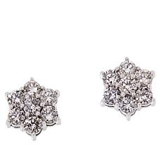 Passport to Gems 14K White Gold 1.50ctw Diamond Cluster Earrings